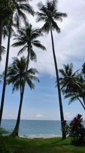 Paradise, Kinde Island, Nouvelle Calédonie