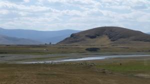 Mongolian steppes 2