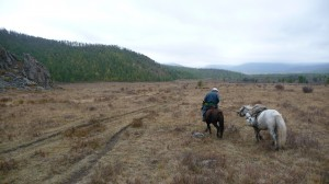 Horse riding to Naiman Nuur