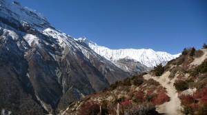 Around Khangsar 1, Annapurna, Nepal