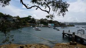 Sydney beach with shark protection