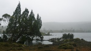 Lake and fog, Overland Track, Tasmania