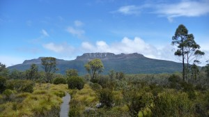 Sunshine on the Overland Track, Tasmania