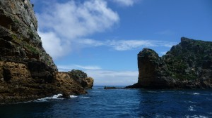 Poor Knights Islands, 1, New Zealand