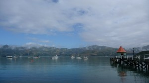 Sea in Akaroa, New Zealand