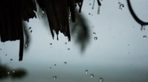 Rain 02, Namua Island, Samoa